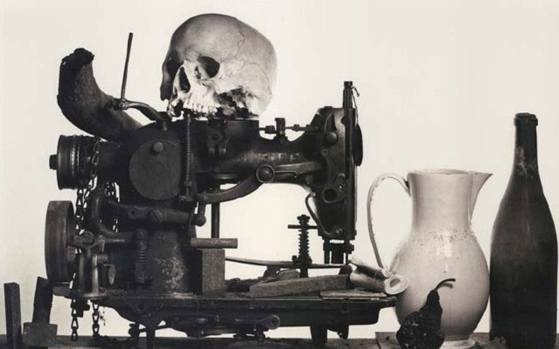 """Platinum and palladium print. Irving Penn. Composition with Skull and Pear, New York. 1979. 11 7/8 x 19"""" (30.2 x 48.3 cm). © 1981 Irving Penn."""